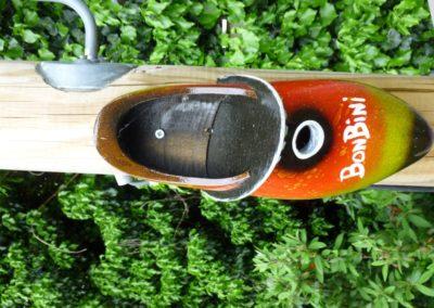P1000178 (Custom)